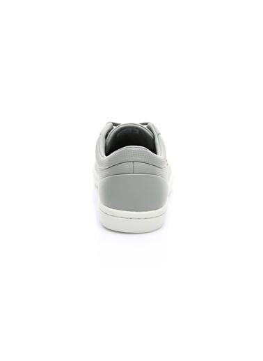 Lacoste Sneakers Gri